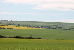 Section 23 Hundred of Roberts, Wharminda, SA 5603