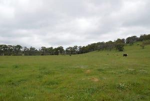 906 Ryanda Creek Road, Ben Lomond, NSW 2365