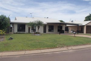 3 Magoffin Street, Farrar, NT 0830