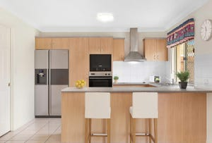 9 Alfred Place, Springfield Lakes, Qld 4300