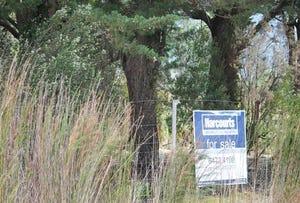 48 Gould Street, Gormanston, Tas 7466