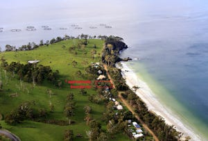 Lot 45 Big Roaring Beach Road, Surveyors Bay, Tas 7116