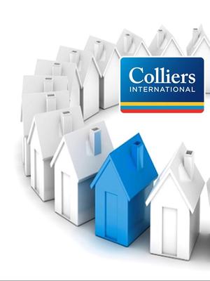 Colliers Rentals