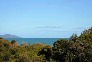 141 Carlton Beach Road, Dodges Ferry, Tas 7173