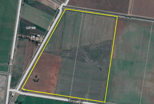 Lot 166 & 167, Farm 1997 Grigg Rd, Leeton, NSW 2705