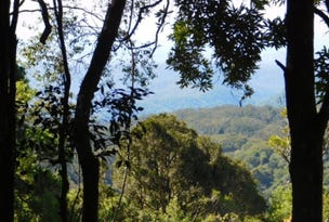335 Repeater Station Road, Springbrook, Qld 4213