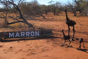 Marron Station, Carnarvon, WA 6701