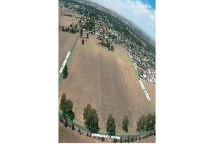 169-199 Redlands Road, Corowa, NSW 2646