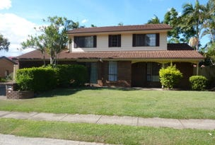 19 Lynelle  Street, Sunnybank Hills, Qld 4109