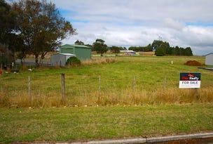 891 Ridgley Highway, Ridgley, Tas 7321