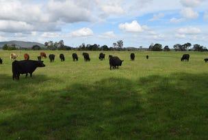 Lot 225 Lower Coldstream Road, Calliope, NSW 2462