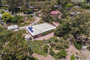 9 Belvedere Court, Aberfoyle Park, SA 5159