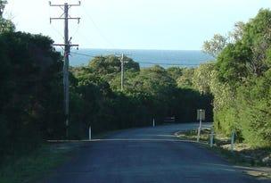 238 Harveys Farm Road, Bicheno, Tas 7215