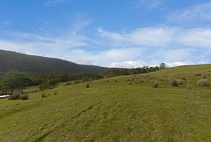 Lot 3/951 Sand River Road, Buckland, Tas 7190