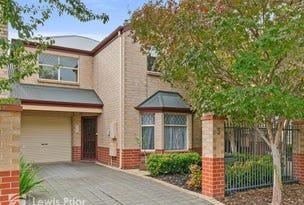 5 Bahloo Avenue, Mitchell Park, SA 5043