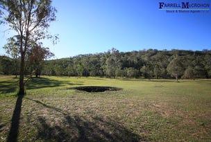 Lot 251, Armidale Road, Blaxlands Creek, NSW 2460