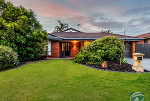 5 Williams Street, Evanston Park, SA 5116