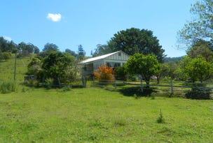 1253 Theresa Creek Road, Theresa Creek, NSW 2469