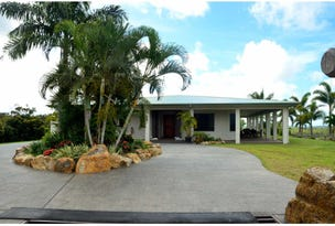 909  Mt Ossa - Seaforth Rd, Seaforth, Qld 4741