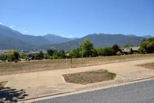 Stage 3 Fiddleback Drive, Tawonga South, Vic 3698
