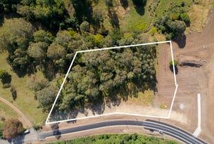 Lot 1461, Bong Bong Road, Huntley, NSW 2530