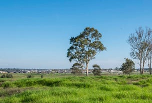 Lot 1129 Greystones Drive, Chisholm, NSW 2322