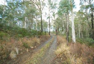 2302 Victoria Valley Road, Victoria Valley, Tas 7140