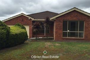 31 Chantell Avenue, Endeavour Hills, Vic 3802