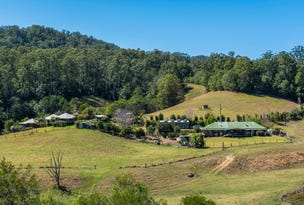 1399 Bellingen Road, Bellingen, NSW 2454