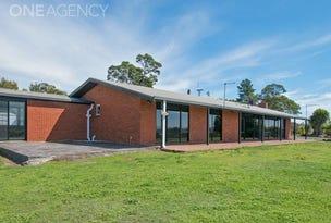 220 Norwich Drive, Longford, Tas 7301
