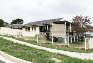 114 Strickland Crescent, Ashcroft, NSW 2168