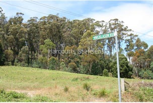 Lot 1 Nicklasons Road, Pyengana, Tas 7216