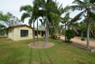 4 Caterina Court, Black River, Qld 4818