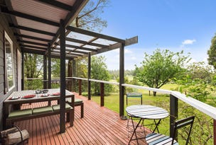 225 Old Colac Road, Beech Forest, Vic 3237
