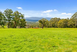 785 Gembrook-Launching Place Road, Hoddles Creek, Vic 3139