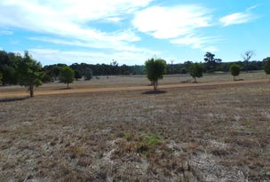 Lot 46 Shepherd Road, Frankland River, WA 6396