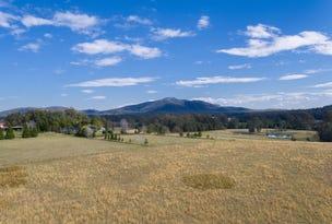 Lot 10 Ridgeview Estate, King Creek, NSW 2446