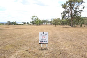 Lot 230 Hillview, Louth Park, NSW 2320