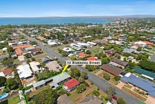 12 Blakeney Street, Woody Point, Qld 4019