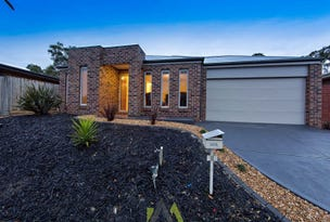 8 Warrenwood Place, Langwarrin, Vic 3910