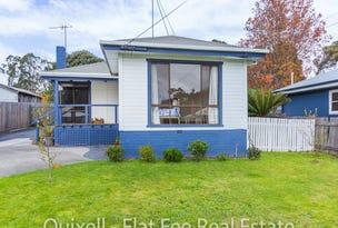 46 Blamey Road, Punchbowl, Tas 7249