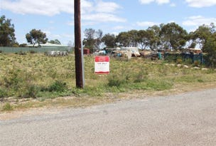 Lot 112 Station Street, Coorow, WA 6515