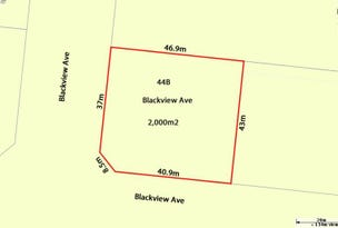 44B Blackview Avenue, Black River, Qld 4818