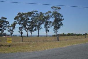 Lot 7 99 Minimbah Drive, Singleton, NSW 2330