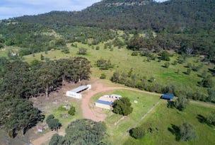 593 Redmanvale Road, Jerrys Plains, NSW 2330