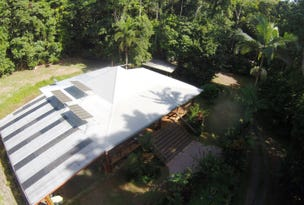 154 Spurwood Road, Daintree, Qld 4873