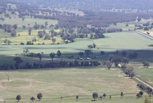 1730 Black Stump Way, Coolah, NSW 2843