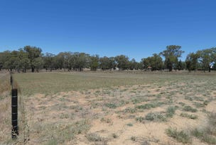 Bendick Murrell Road, Bendick Murrell, NSW 2803