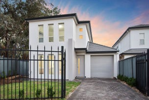 51 Brecon Street, Windsor Gardens, SA 5087