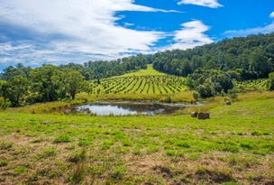 49 Kings Ridge Forest Road, Coramba, NSW 2450